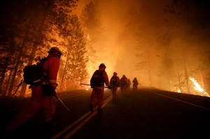Inmate firefighters walk along Highway 120.  Crews are clearing brush and setting sprinklers to protect two groves of giant sequoias as a massive week-old wildfire rages along the remote northwest edge of Yosemite National Park. Photo: Jae C. Hong