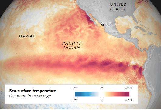 Climate The Blob